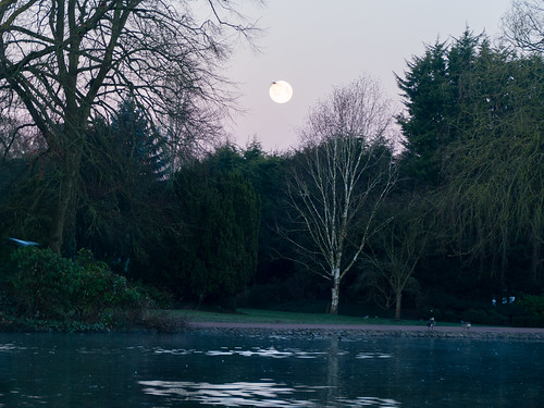 Full moon setting, West Park