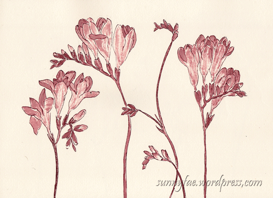 purple freesia in red ink