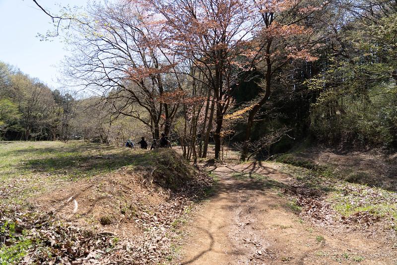 20190413_tenranzan-tonosuyama_0241.jpg