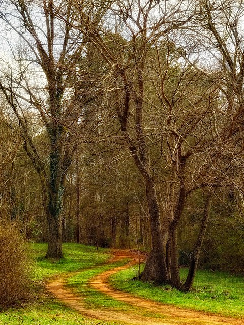 Red clay pathway