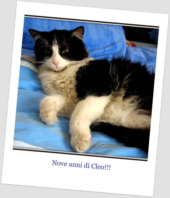 9 anni di Cleo!