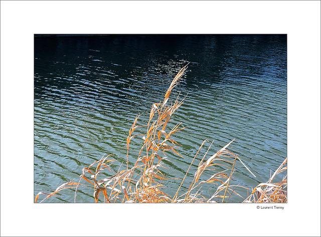 Au fil de l'eau, au fil du vent...