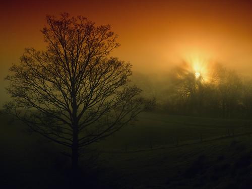 ellesmerefnc shropshire sunrise stdavidsday march sky