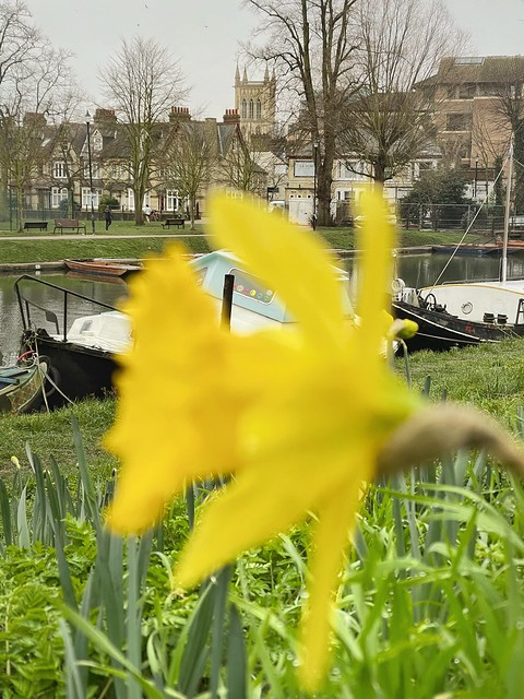 Cambridge 1 March 2021