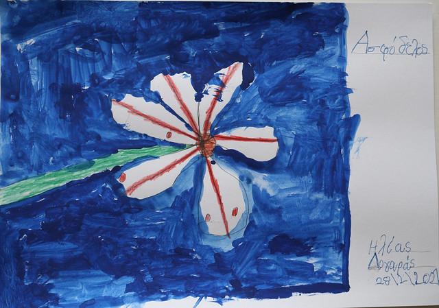 Greek wild flower Asfodelos (Ασφόδελος)