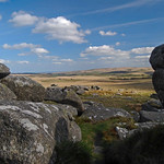 3. Mai 2009 - 16:58 - A view from Littaford Tor across Dartmoor National Park, Devon.