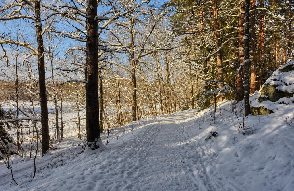 A Winter Bend