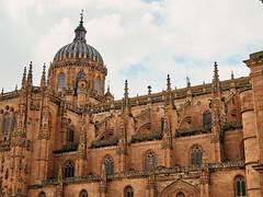 Catedral Nueva de Salamanca.