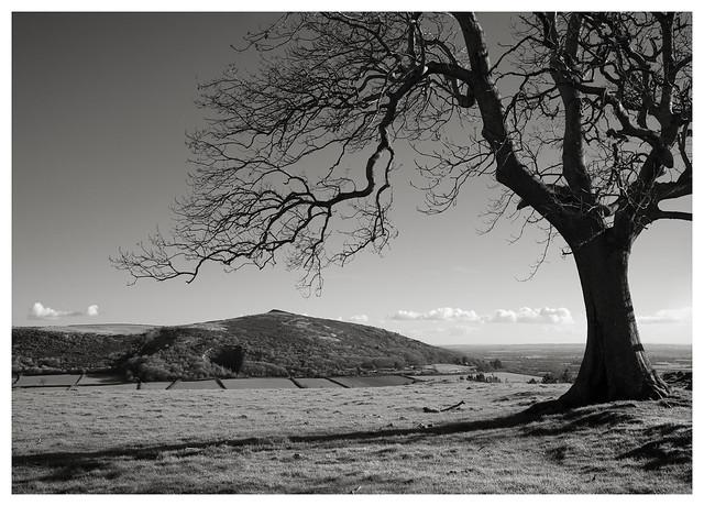 Crook Peak, Somerset