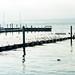 2021-02-12-lake-walk-3