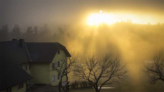 _DSC31445  The last rays of sunshine