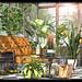 ChiMia - Marais Lounge in Moody Opulence