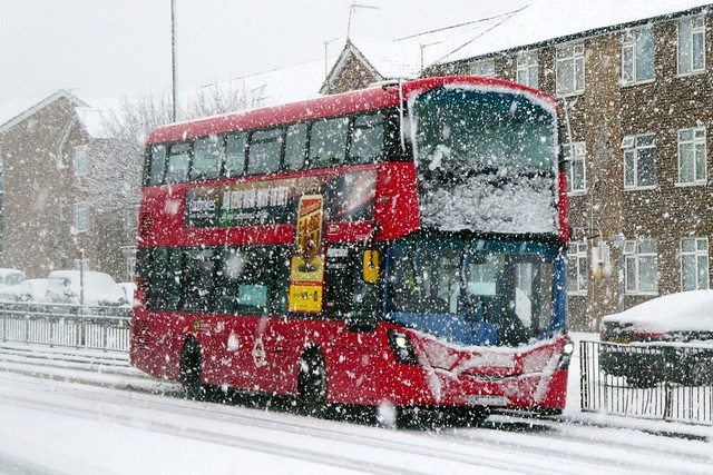 114 In The Snow, Jan 2021