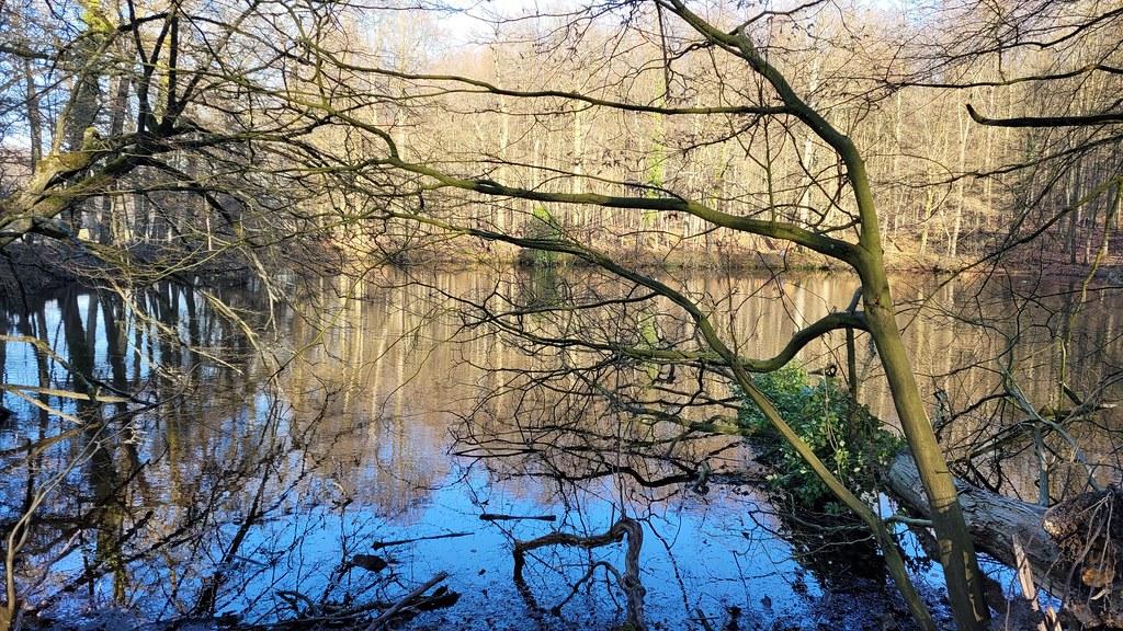 Park van Tervuren