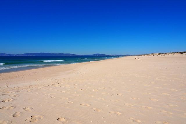 Comporta Beach, Portugal