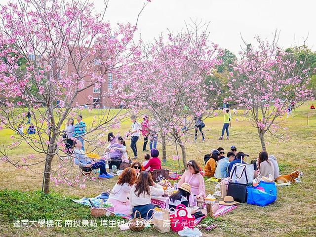 暨南大學櫻花 南投景點 埔里親子 野餐
