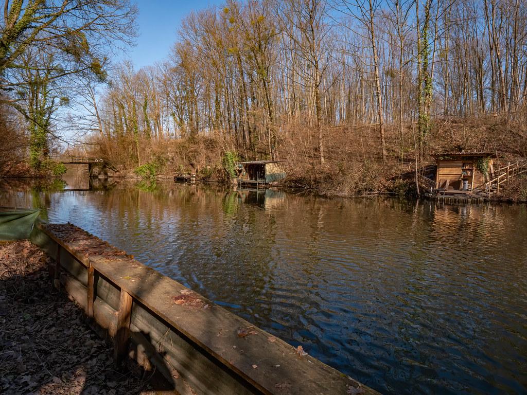 Le coin des pêcheurs de la forêt du Rhin... 50993602987_af25156cc8_b