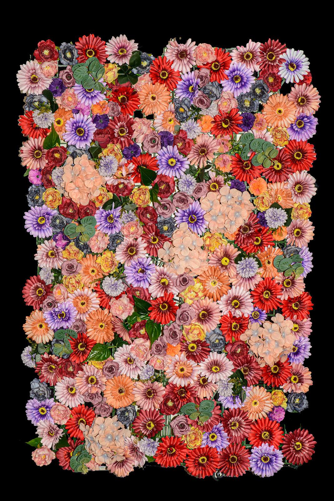 DSC_5338_Ali_flowers_12-Edit.jpg