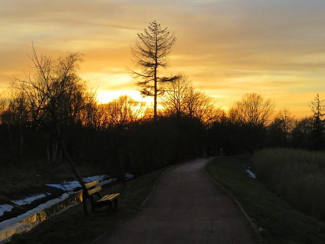 Evening Light / Happy Monday Bench