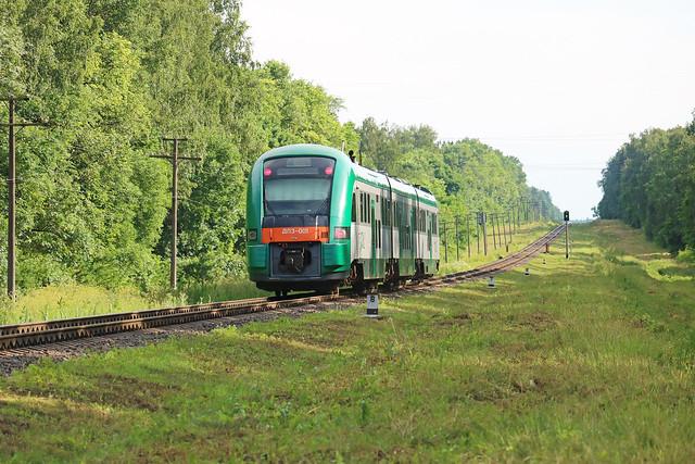 Дизель-поезд ДП3-001 на перегоне Буйничи/Чернозёмовка.