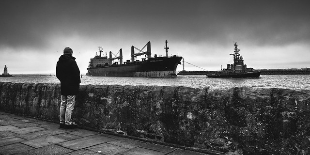 The Federal Sutton bulk carrier coming into dock