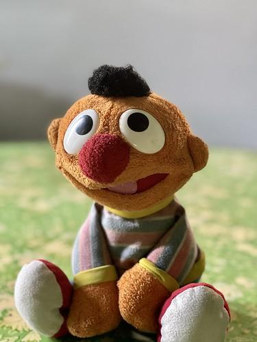 Ernie's portrait