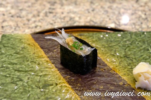 kampachi 33 sushi omakase (26)