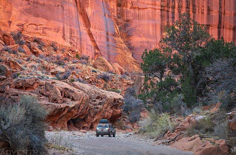 Swell Jeep in Horse Canyon