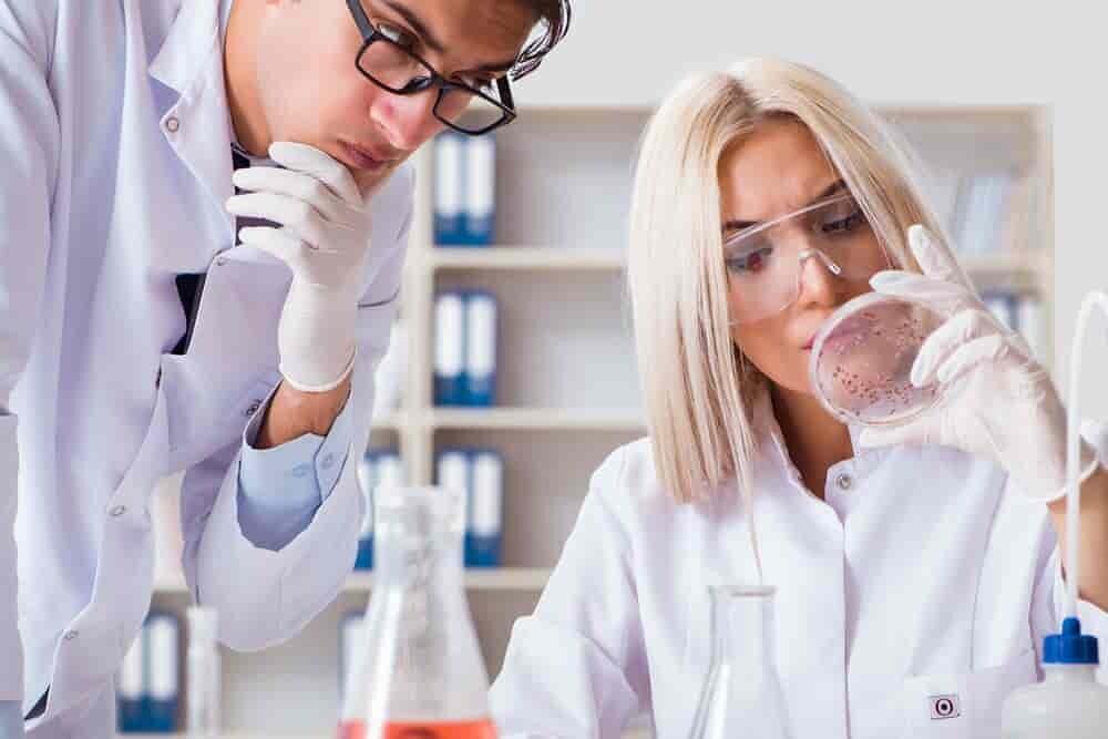 prévoir-les-interactions-microbiennes-dans-intestin