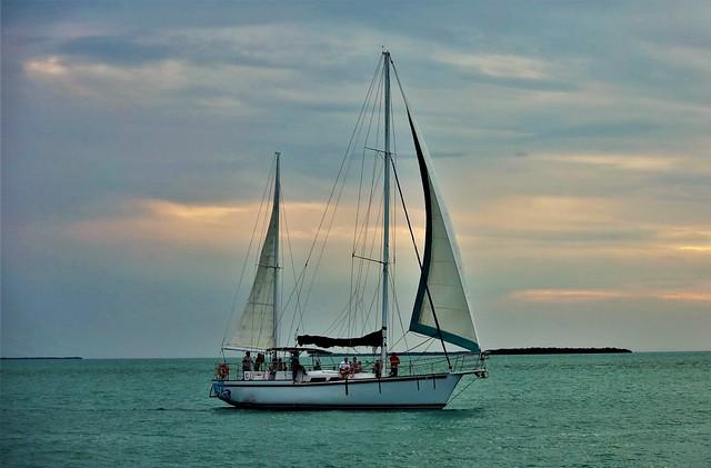 Sail The Harbor