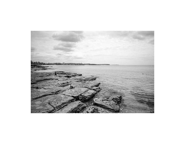 Cabbage Tree Bay, Sydney, January 2021  #135