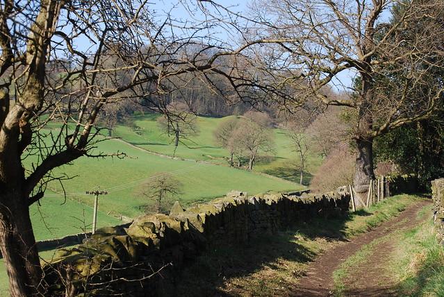 Footpath through the farmland