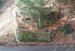 Pillboxes, Surrey