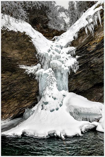 Que voyez-vous ?  Un arbre, un oiseau, un monstre de glace ou la victoire de Samothrace !