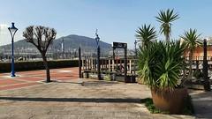 En el Puerto Deportivo de Getxo