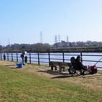 Views along the Riverside Walk at Preston Dock