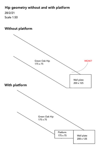 Hip geometry without and with platform