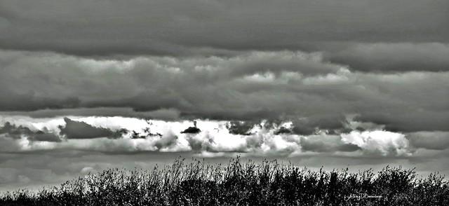 October Skyline 510bws-1