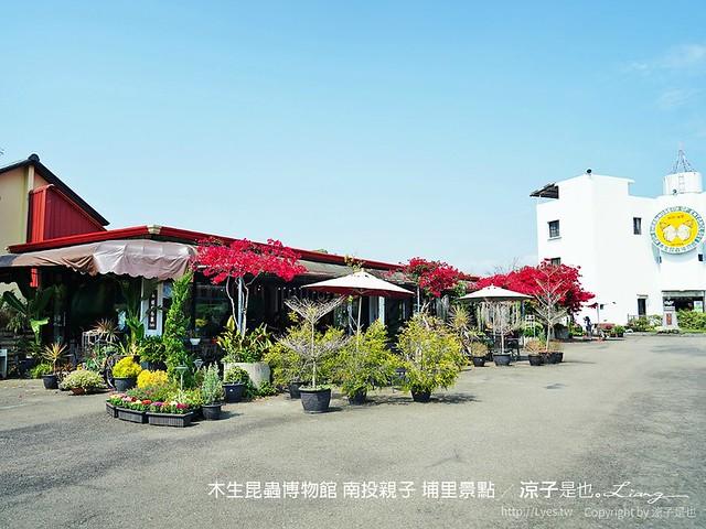 木生昆蟲博物館 南投親子 埔里景點