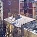 """<p><a href=""""https://www.flickr.com/people/paspog/"""">paspog</a> posted a photo:</p>  <p><a href=""""https://www.flickr.com/photos/paspog/50996198696/"""" title=""""183 - Paris en Février 2021 -  de la neige sur les toits""""><img src=""""https://live.staticflickr.com/65535/50996198696_e6491fa60a_m.jpg"""" width=""""240"""" height=""""159"""" alt=""""183 - Paris en Février 2021 -  de la neige sur les toits"""" /></a></p>"""