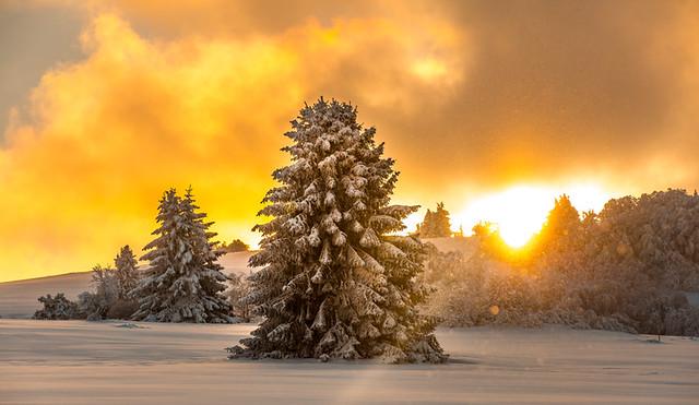 Rhön Winter-66.jpg