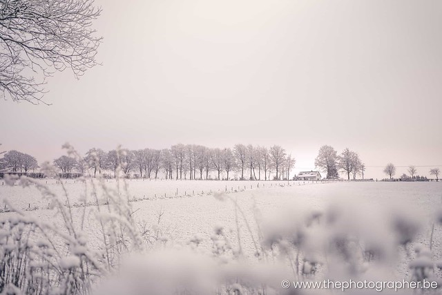 Een huisje in de besneeuwde velden
