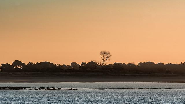 Petit matin doré à l'entrée du golfe du Morbihan