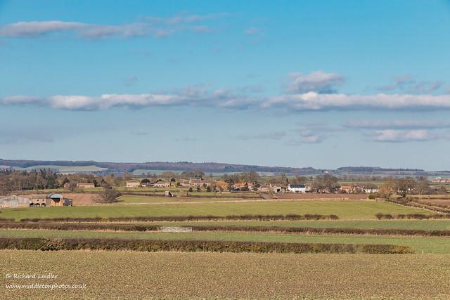 Ovington from West Middleton farm Feb 2021