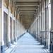 """<p><a href=""""https://www.flickr.com/people/136595963@N08/"""">maduzooma</a> posted a photo:</p>  <p><a href=""""https://www.flickr.com/photos/136595963@N08/50996443327/"""" title=""""Palais Royal, Paris""""><img src=""""https://live.staticflickr.com/65535/50996443327_de5e1c3f87_m.jpg"""" width=""""160"""" height=""""240"""" alt=""""Palais Royal, Paris"""" /></a></p>"""