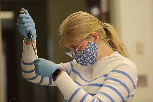 Students learn how to design and troubleshoot their own experiments in the immunology lab.