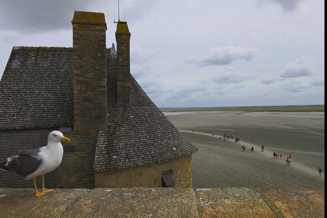 Mont St. Michel, Normandie, France,  728