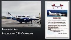 2756_Flamingo Air Beechcraft C99 Commuter