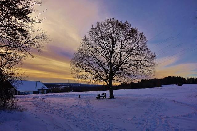 Germany, ein kalter Januartag , abends im Strohgäu, 60097/13483
