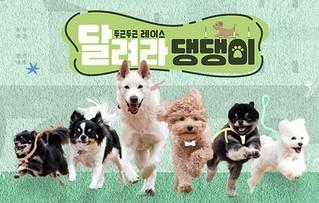 Run Puppy Run Ep.7